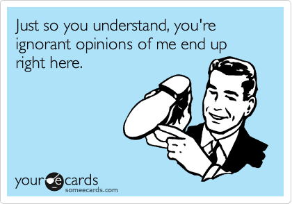 Just so you understand, you're ignorant opinions of me end up right here.