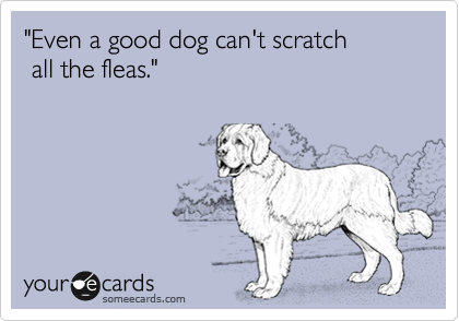 """Even a good dog can't scratch   all the fleas."""