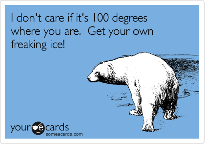 I don't care if it's 100 degrees where you are.  Get your own freaking ice!