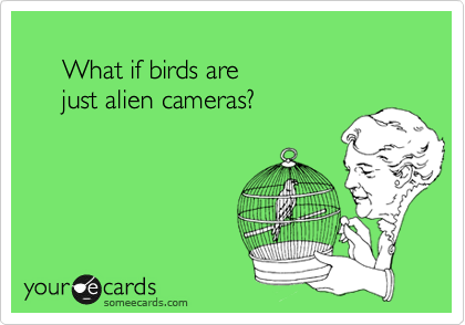 What if birds are       just alien cameras?