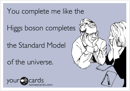 You complete me like the  Higgs boson completes  the Standard Model   of the universe.