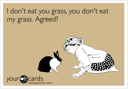 I don't eat you grass, you don't eat my grass. Agreed?