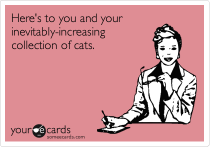 Here's to you and your inevitably-increasing collection of cats.