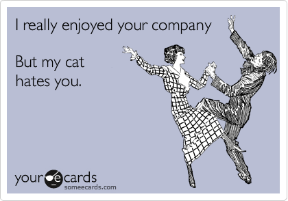 I really enjoyed your company  But my cat hates you.