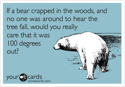 If a bear crapped in the woods, and no one was around to hear the tree fall, would you really care that it was 100 degrees out?