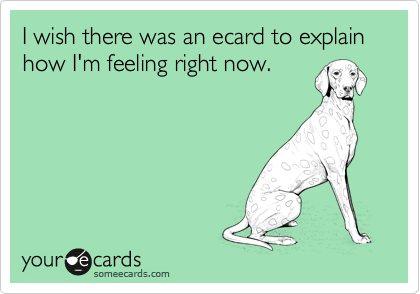 I wish there was an ecard to explain how I'm feeling right now.