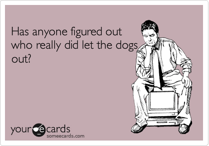 Has anyone figured out who really did let the dogs out?