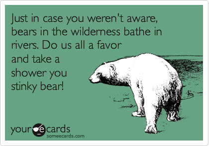 Just in case you weren't aware, bears in the wilderness bathe in rivers. Do us all a favor and take a shower you stinky bear!