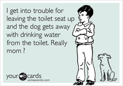I get into trouble for leaving the toilet seat up and the dog gets away with drinking water from the toilet. Really mom ?