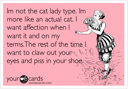 Im not the cat lady type. Im more like an actual cat. I want affection when I want it and on my terms.The rest of the time I  want to claw out your eyes and piss in your shoe.