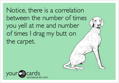 Notice, there is a correlation between the number of times you yell at me and number of times I drag my butt on the carpet.