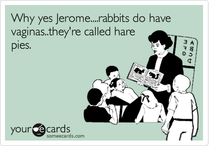 Why yes Jerome....rabbits do have  vaginas..they're called hare pies.