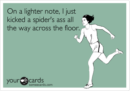 On a lighter note, I just kicked a spider's ass all the way across the floor.