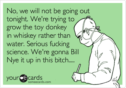 No, we will not be going out  tonight. We're trying to grow the toy donkey in whiskey rather than water. Serious fucking science. We're gonna Bill Nye it up in this bitch.....