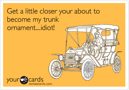 Get a little closer your about to become my trunk ornament....idiot!