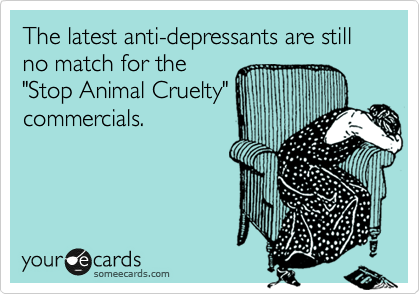 "The latest anti-depressants are still no match for the ""Stop Animal Cruelty"" commercials."