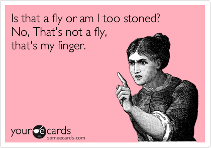 Is that a fly or am I too stoned? No, That's not a fly, that's my finger.