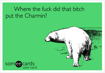 Where the fuck did that bitch put the Charmin?