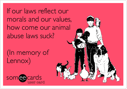 If our laws reflect our morals and our values, how come our animal abuse laws suck?   %28In memory of Lennox%29