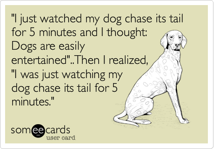 """I just watched my dog chase its tail for 5 minutes and I thought: Dogs are easily entertained""..Then I realized, ""I was just watching my dog chase its tail for 5 minutes."""