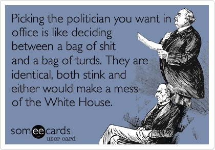 Picking the politician you want in office is like deciding between a bag of shit and a bag of turds. They are identical, both stink and either would make a mess of the White House.