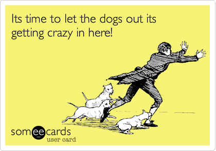 Its time to let the dogs out its getting crazy in here!