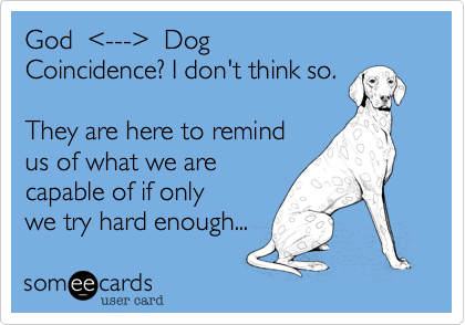 God  %3C---%3E  Dog Coincidence? I don't think so.  They are here to remind us of what we are capable of if only we try hard enough...