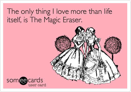 The only thing I love more than life itself, is The Magic Eraser.