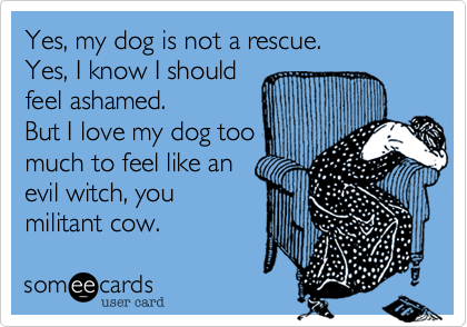 Yes, my dog is not a rescue. Yes, I know I should feel ashamed. But I love my dog too much to feel like an evil witch, you militant cow.