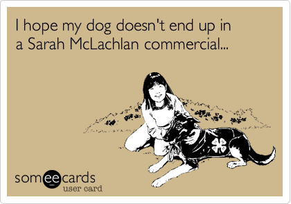 I hope my dog doesn't end up in a Sarah McLachlan commercial...