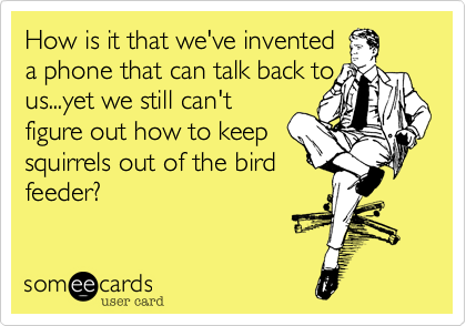 How is it that we've invented a phone that can talk back to us...yet we still can't figure out how to keep squirrels out of the bird feeder?