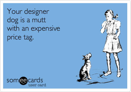 Your designer  dog is a mutt  with an expensive price tag.