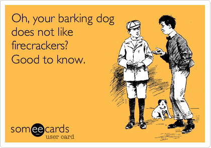 Oh, your barking dog does not like firecrackers?   Good to know.