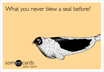 What you never blew a seal before?