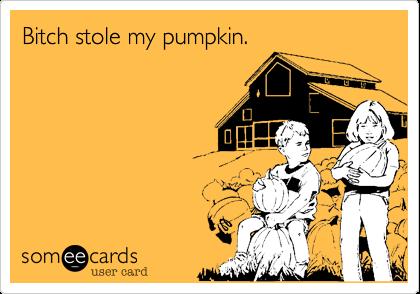 Bitch stole my pumpkin.