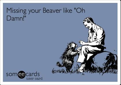 "Missing your Beaver like ""Oh Damn!"""