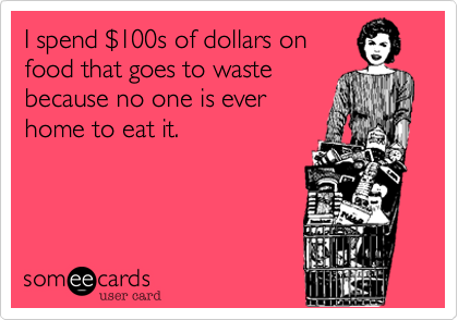 I spend %24100s of dollars on food that goes to waste because no one is ever home to eat it.