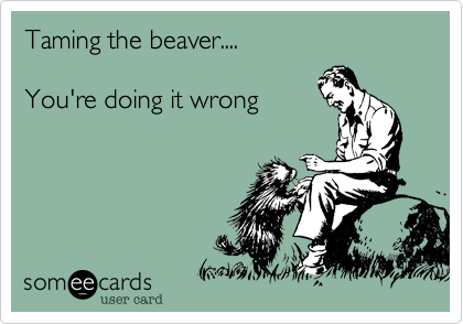 Taming the beaver....  You're doing it wrong