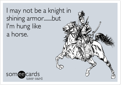 I may not be a knight in shining armor.......but I'm hung like a horse.