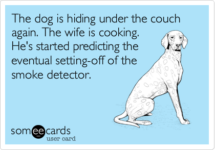 The dog is hiding under the couch again. The wife is cooking. He's started predicting the eventual setting-off of the smoke detector.