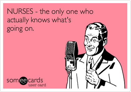 NURSES - the only one who actually knows what's going on.