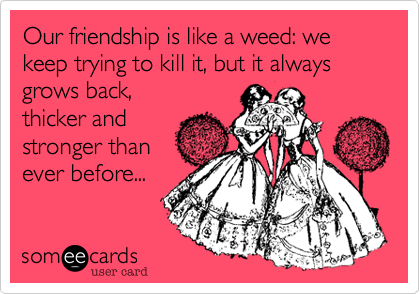 Our friendship is like a weed: we keep trying to kill it, but it always grows back, thicker and stronger than ever before...