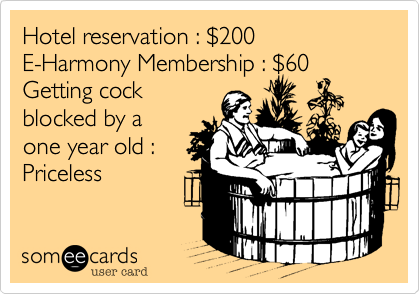 Hotel reservation : %24200 E-Harmony Membership : %2460 Getting cock blocked by a one year old : Priceless