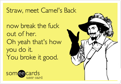 Straw, meet Camel's Back  now break the fuck out of her. Oh yeah that's how you do it. You broke it good.