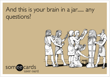 And this is your brain in a jar...... any questions?