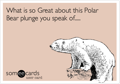 What is so Great about this Polar Bear plunge you speak of.....