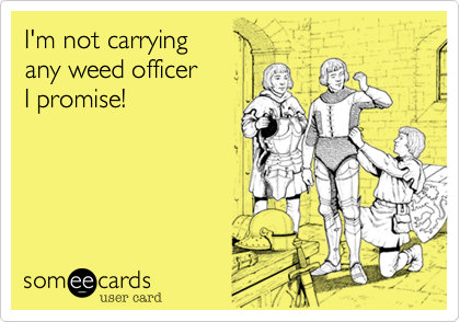 I'm not carrying  any weed officer I promise!