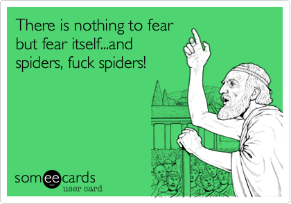 There is nothing to fear but fear itself...and spiders, fuck spiders!