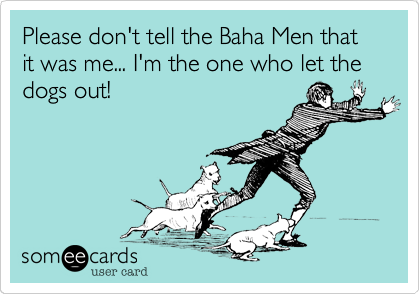 Please don't tell the Baha Men that it was me... I'm the one who let the dogs out!