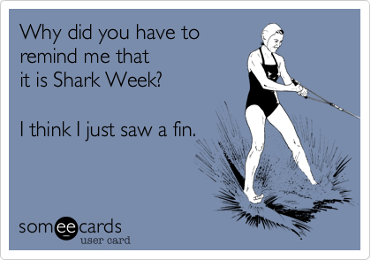 Why did you have to remind me that it is Shark Week?  I think I just saw a fin.